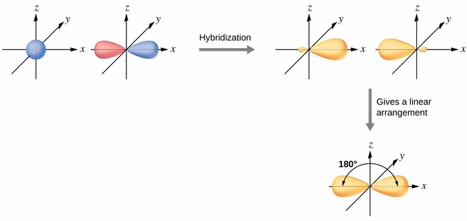 sp Hybridization | Introduction to Chemistry
