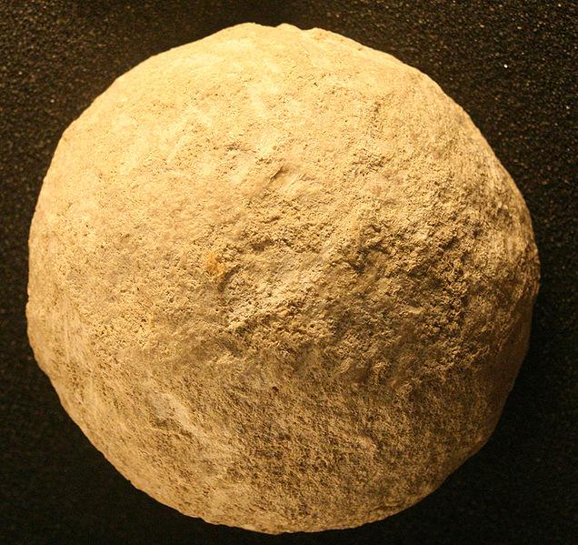 neolithic revolution definition