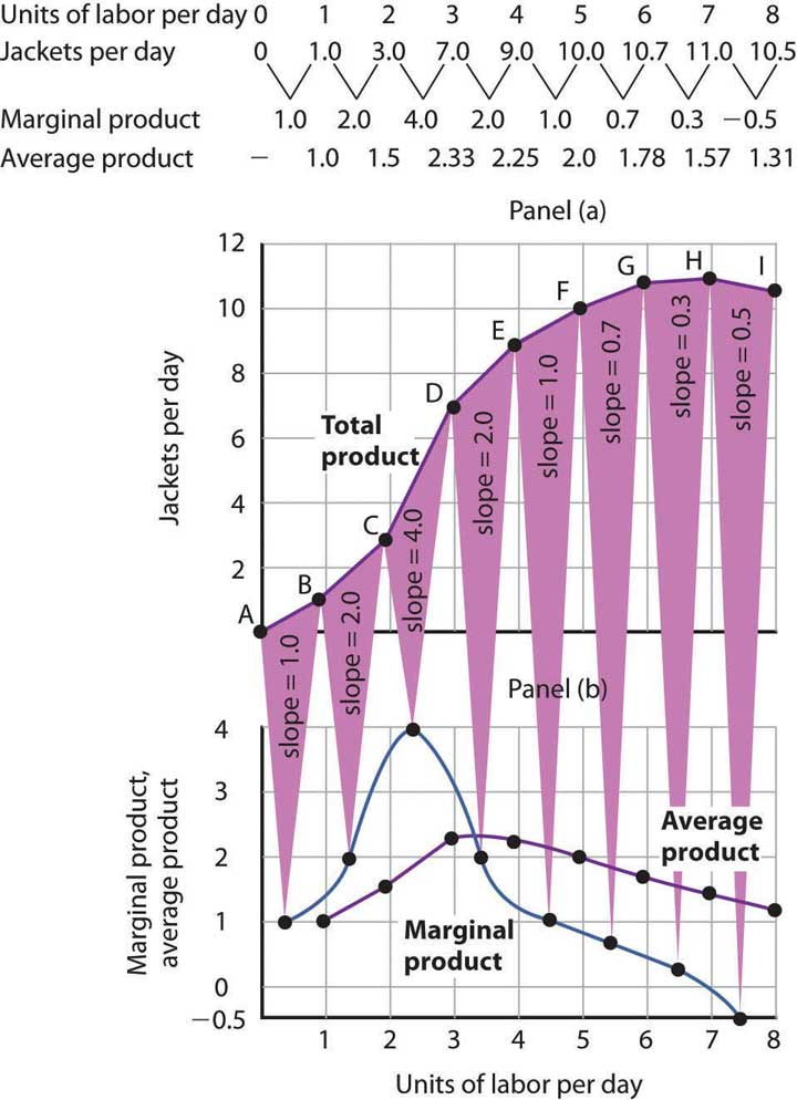 Shows the table values and graph of Acme's Clothing's Total, Average, and Marginal Product Curves.