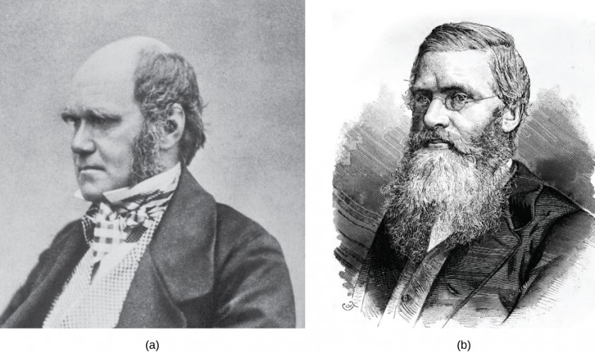 Pictures of Charles Darwin and Alfred Wallace are shown.