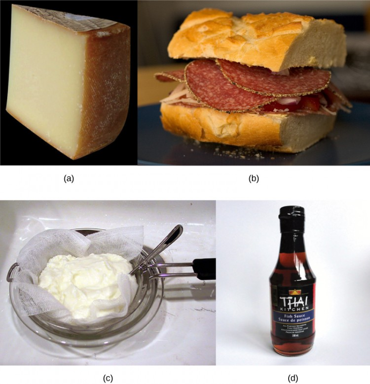 The photo collage shows cheese (a), salami (b) in a sandwich, yogurt (c) in a strainer, and a bottle of fish sauce (d).
