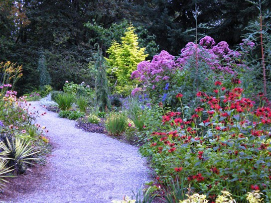 A winding pathway is bordered by flowers that come in a variety of colors and shapes.