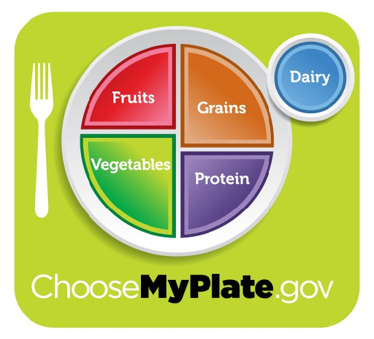 Healthy diet logo shows a plate divided into four sections, labeled