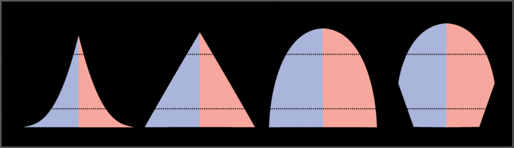 For the four different age structure diagrams shown, the base represents birth and the apex occurs around age 70. The age structure diagram for stage 1, rapid growth, is shaped like a deflated triangle that starts out wide at the base and rapidly decreases to a narrow apex, indicating that the number of individuals decreases rapidly with age. The age structure diagram for stage 2, slow growth, is triangular in shape, indicating that the number of individuals decreases steadily with age. The age structure diagram for stage 3, stable growth, is rounded at the top, indicating that the number of individuals per age group decreases gradually at first, then increases for the older portion of the population. The final age structure diagram, stage 4, widens from the base to middle age, then narrows to a rounded top. The population type indicated by this diagram is not given, as this is part of the art connection question.