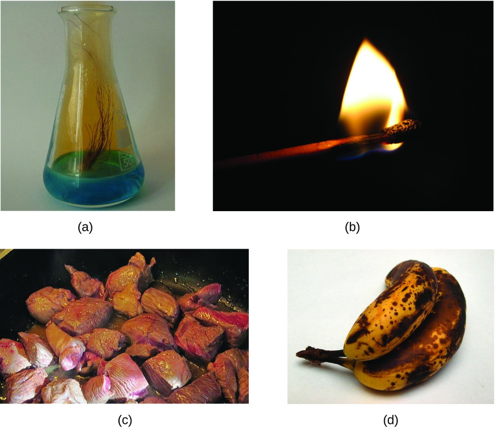 FigureA is a photo of the flask containing a blue liquid. Several strands of brownish copper are immersed into the blue liquid. There is a brownish gas rising from the liquid and filling the upper part of the flask. FigureB shows a burning match. FigureC shows red meat being cooked in a pan. FigureD shows a small bunch of yellow bananas that have many black spots.