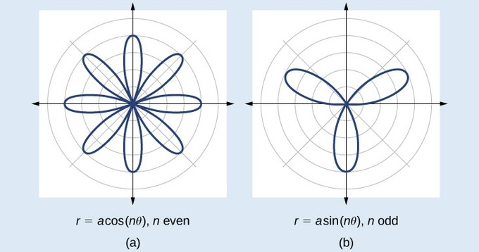 For the cosine curve, n is even, and the curve has 8 petals (four centered on each of the axes, and four in between them). The petals all meet at the origin. For the sine curve, n is odd, and the curve has 3 petals; one centered on the negative y axis, and one each in the second and first quadrants. The petals all meet at the origin.