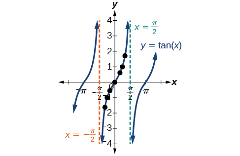 Between sets of vertical asymptotes, the tangent function increases, decreasing in slope and then increasing again similar to a cubic function.