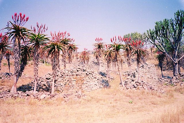The ruins of the foundations surrounded by trees.