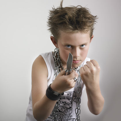 is personality behavior and temperament genetic