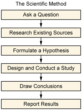 the research process boundless sociology the scientific method is an essential tool in research this image lists the various stages of the scientific method