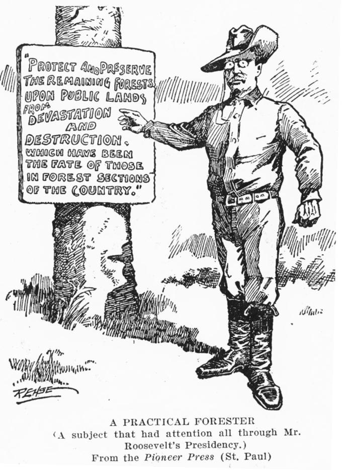 "Theodor Roosevelt points to a sign posted to a tree that says ""Protect and preserve the remaining forests upon public lands from devastation and destruction, which have been the fate of those in forest sections of the country."" Text at the bottom of the cartoon reads ""A practical forester (a subject that had attention all through Mr. Roosevelt's presidency.) From the Pioneer Press (St. Paul)."""