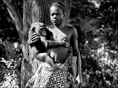 "A photo of an African man holding a Chimpanzee, displayed in the Bronx Zoo as part of a ""human exhibit."""