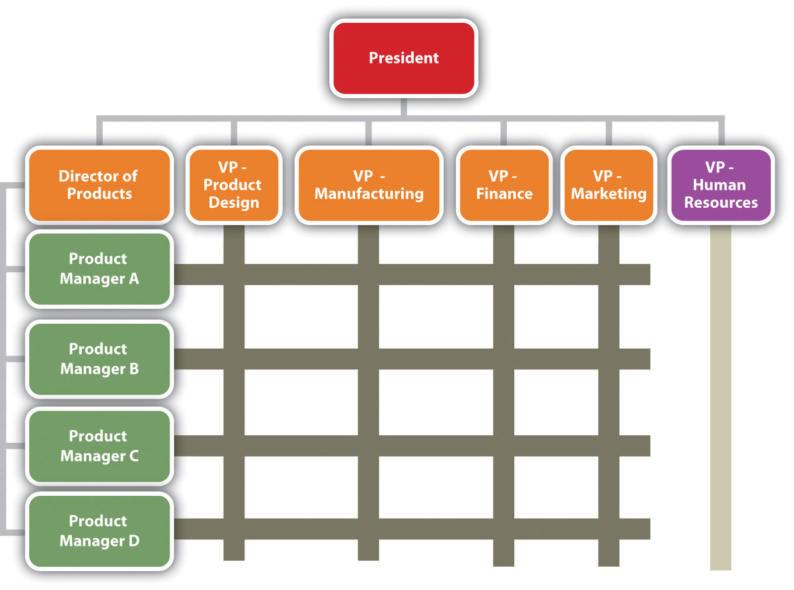 5 organizational structure examples | which to use?