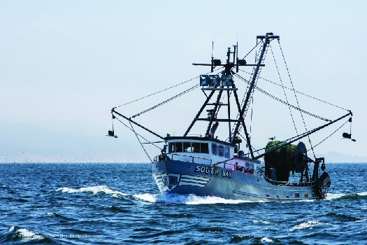 An image of a commercial fishing boat with several nets and a tall mast. The boat is floating on the surface of a large body of water.