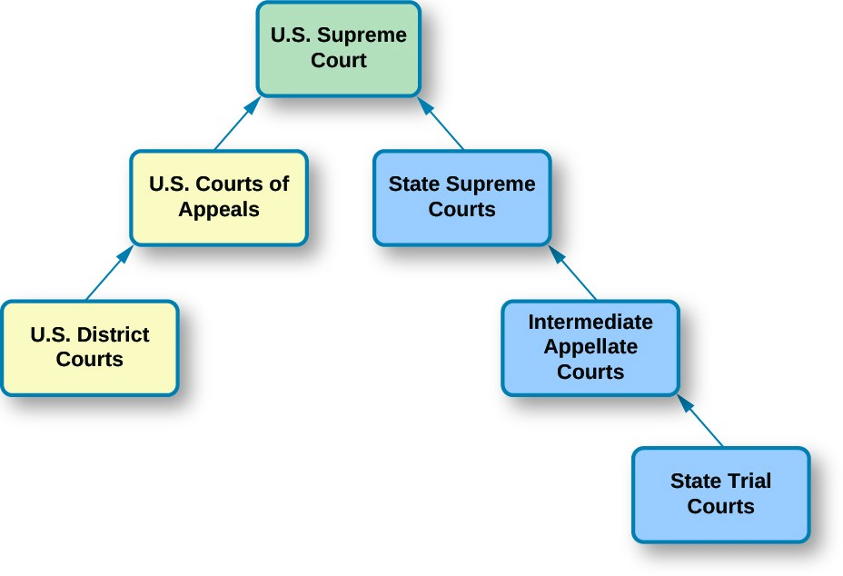A chart that demonstrates the structure of the dual court system. At the top of the chart is a box labeled
