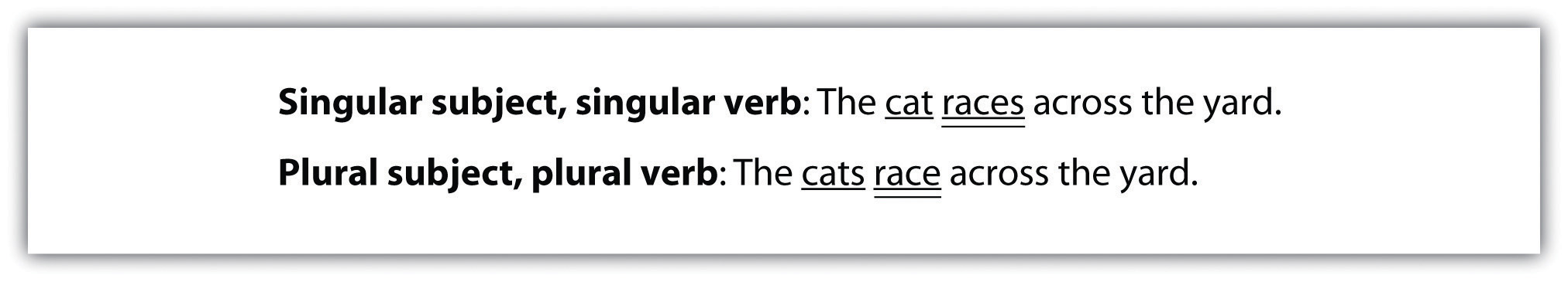 Printable Worksheets third person singular worksheets : 2.2 Subject-Verb Agreement | Successful Writing
